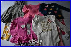 New 11 Pc. Lot Of Baby Girl Clothes 6-9 Months Nwt $138